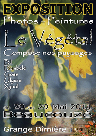 affiche-expo-angers